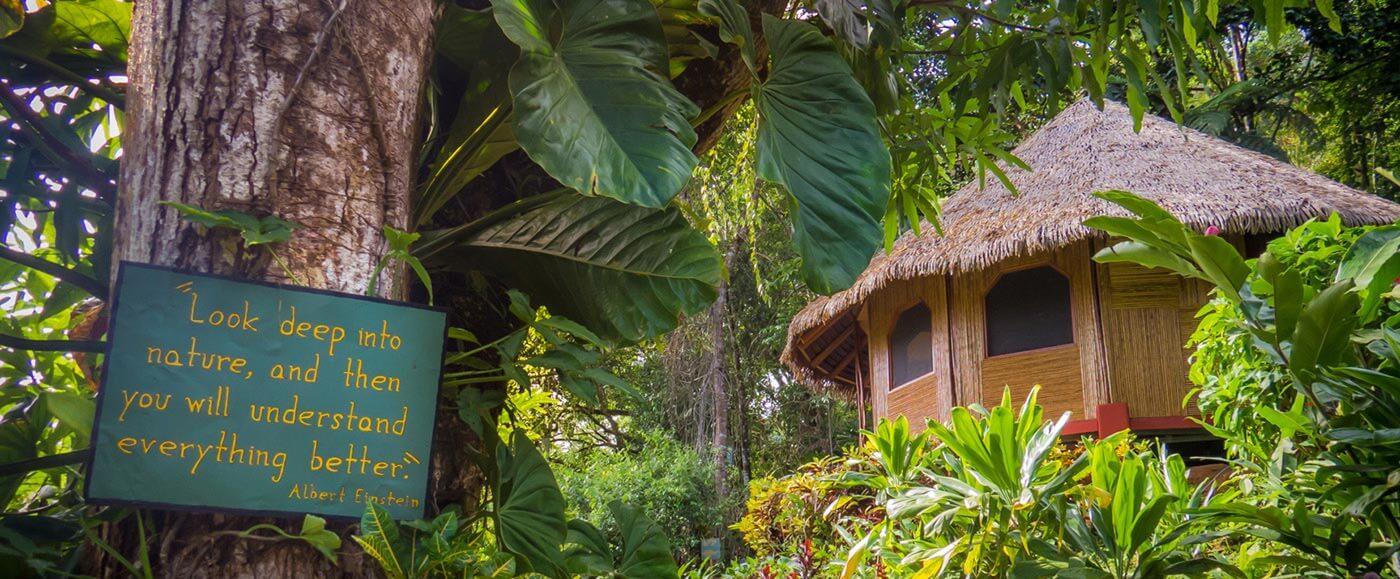 Luna Lodge EcoResort
