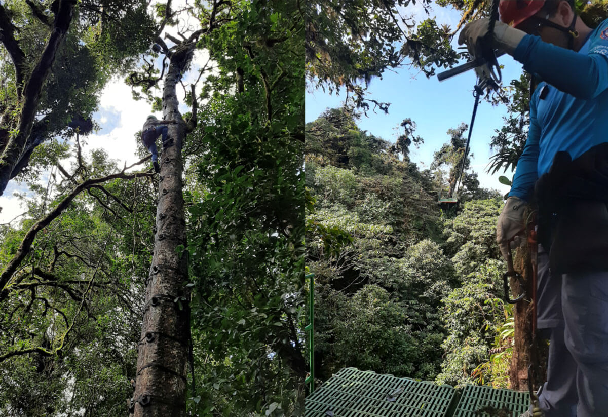 Teleferico Monteverde